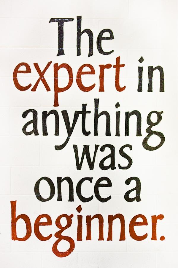 Expert as Beginner