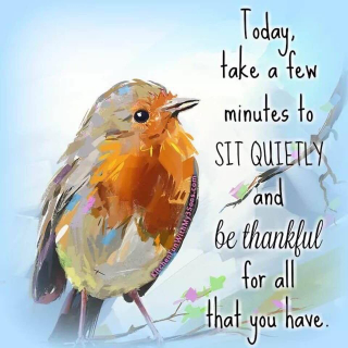 Sit Quietly and Be Grateful